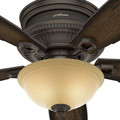 Hunter 53355 52 in. Traditional Ambrose Bengal Ceiling Fan with Light (Onyx) image number 4
