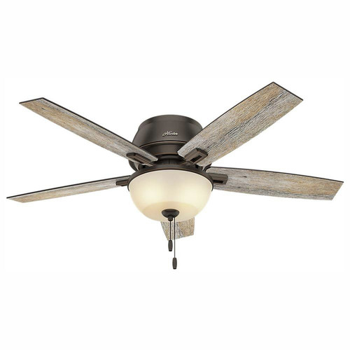 Hunter 53342 52 in. Donegan Onyx Bengal Ceiling Fan with Light image number 0