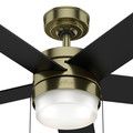 Hunter 59622 52 in. Claudette Modern Brass Ceiling Fan with LED Light Kit and Pull Chain image number 6