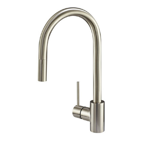 Danze DH450177SS Citron Kitchen Faucet (Stainless Steel)